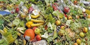 foodwaste-blog