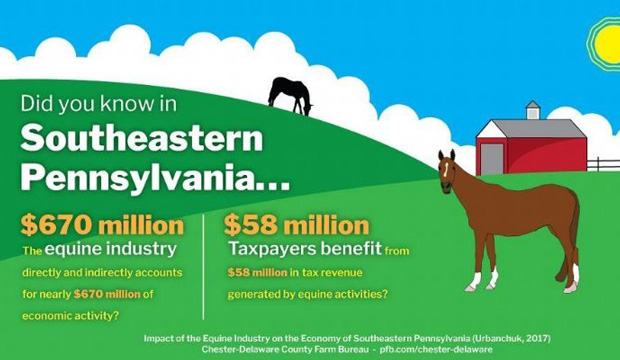 January's Presentation on Equine Activity in SE Pennsylvania by PSPA Members