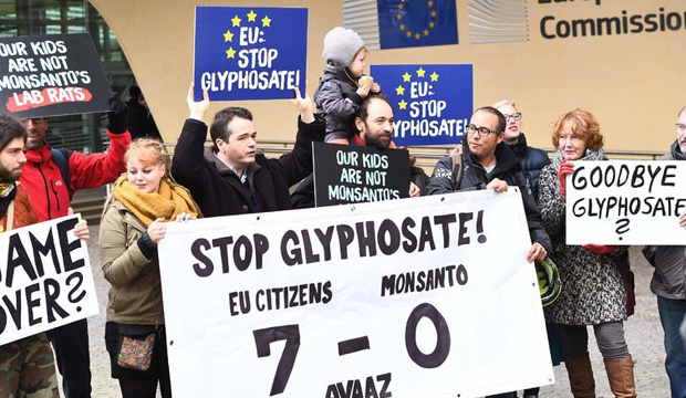 NY Times:  Weedkillers Give Monsanto Trouble in Europe and Arkansas